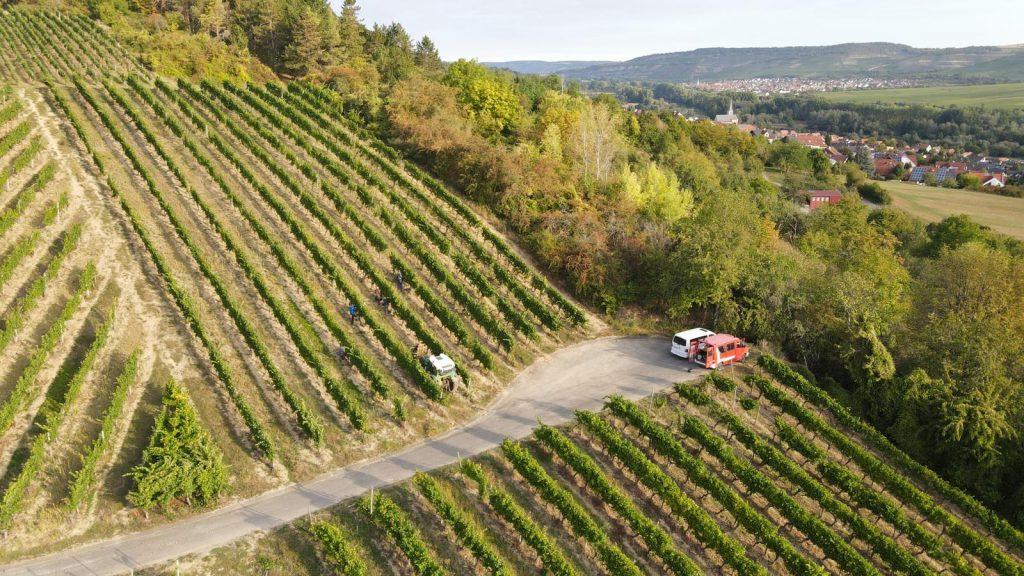 Das Bild zeigt eine Luftbildaufnahme des Weingutes in schöner Athmosühäre.